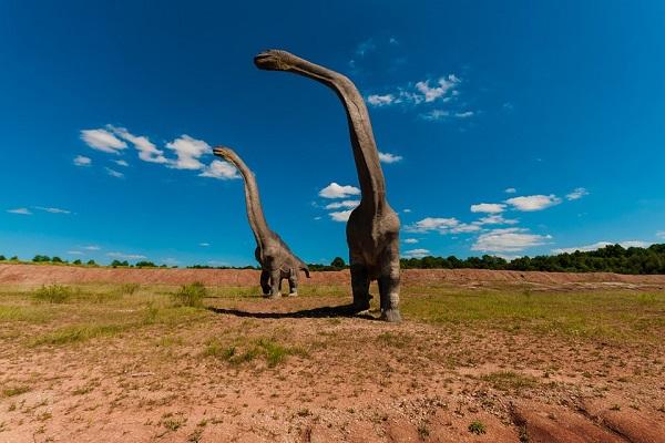 Диносауруси со долги вратови