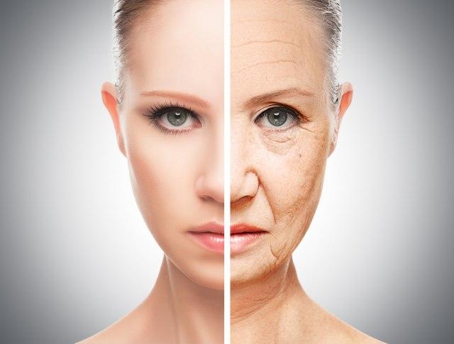 Научниците случајно откриле како да ја сменат насоката на биолошкото стареење