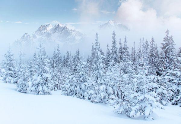 Во снегот во најзафрлените делови на светот е откриено загадување со микропластика