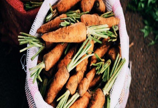 Митови поврзани со ГМО и органската храна во кои треба да престанеме да веруваме