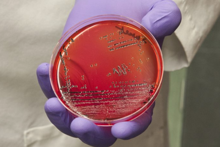 Научниците пронајдоа нов начин за лекување инфекции – менување на генот наместо антибиотици