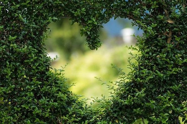 Традициите за Денот на вљубените низ државите