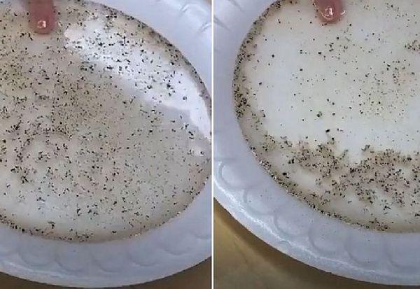 Едноставен експеримент покажува колку е ефективен сапунот во борбата против вирусите