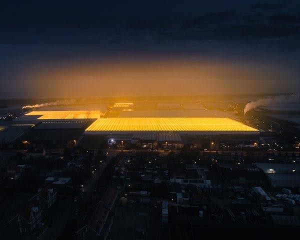 Оранжериите во Холандија фотографирани ноќе
