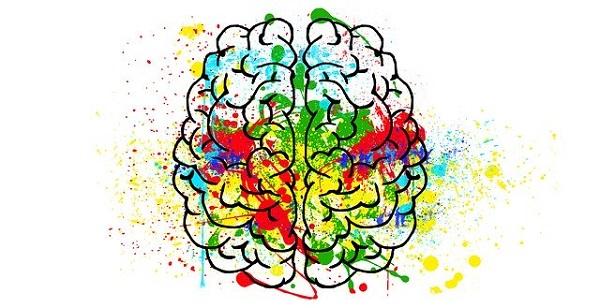 Истражување покажува дека креативноста не се поврзува само со десната страна на мозокот