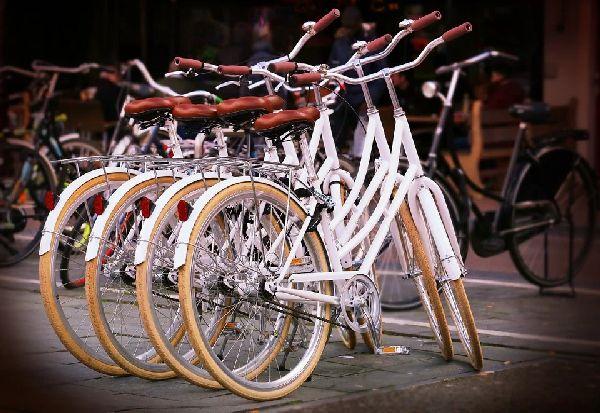 Зголемена продажбата на велосипеди во светот
