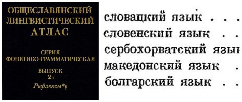 Светските слависти застанаа во одбрана на македонскиот јазик и дијалектите наспроти ставовите на БАН