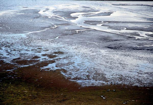 Топењето на вечниот мраз на Арктикот може да ослободи стари смртоносни вируси