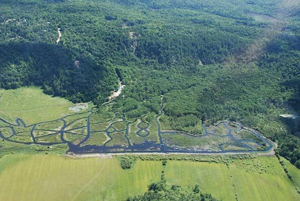 Уникатен воден лавиринт во Канада инспириран од дабарот
