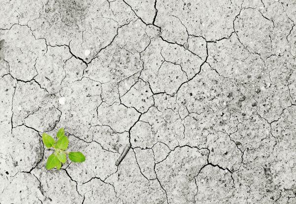 Што би се случило кога светот би реагирал на климатските промени како што реагира на коронавирусот?
