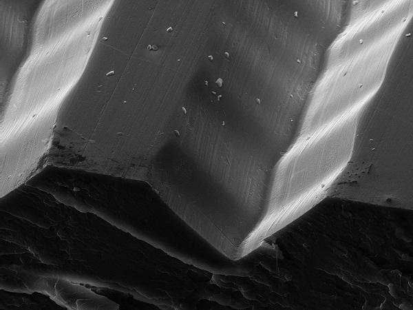 Вака изгледа грамофонска плоча под микроскоп
