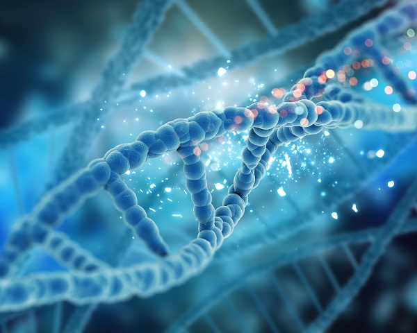 Научниците собрале животинска и човечка ДНК од воздухот