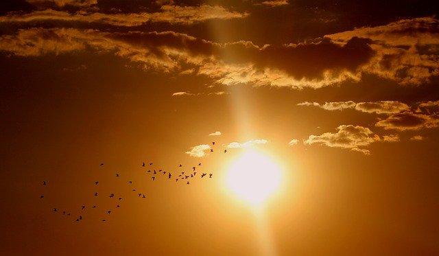 Сончевата светлина го неутрализира коронавирусот 8 пати побрзо отколку што се претпоставуваше