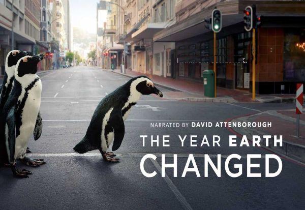 """""""Годината кога Земјата се промени"""" - нов документарец за дивиот свет со Дејвид Атенборо"""