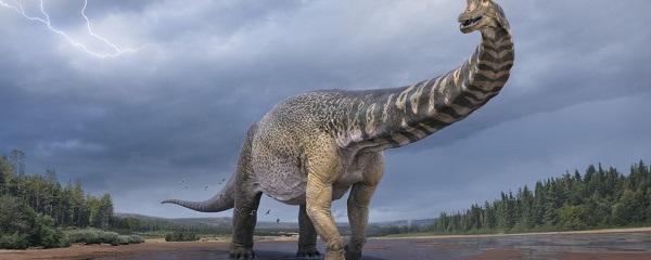 Откриен нов вид диносаурус, долг 30 метри