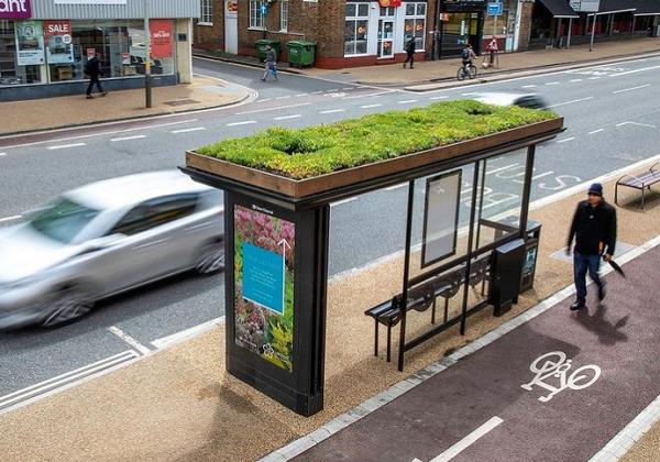 Зелени покриви на автобуските постојки за да се спречи изумирањето на пчелите