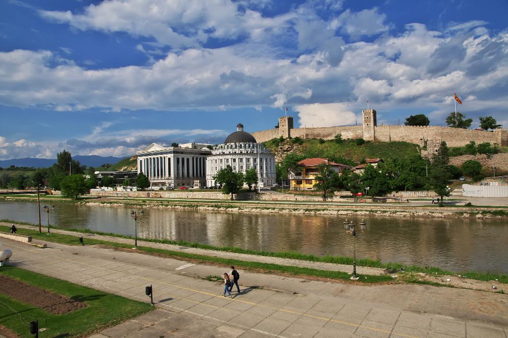 """Пред 10 милиони години во околината на Скопје живееле """"џиновски"""" слонови"""